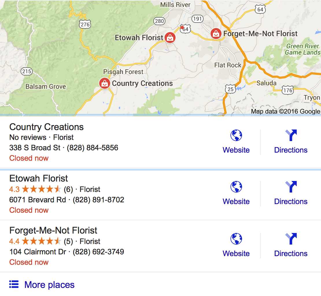 Snippet showing Google local business listings